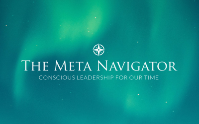 What's in a name? Why Meta Navigator?